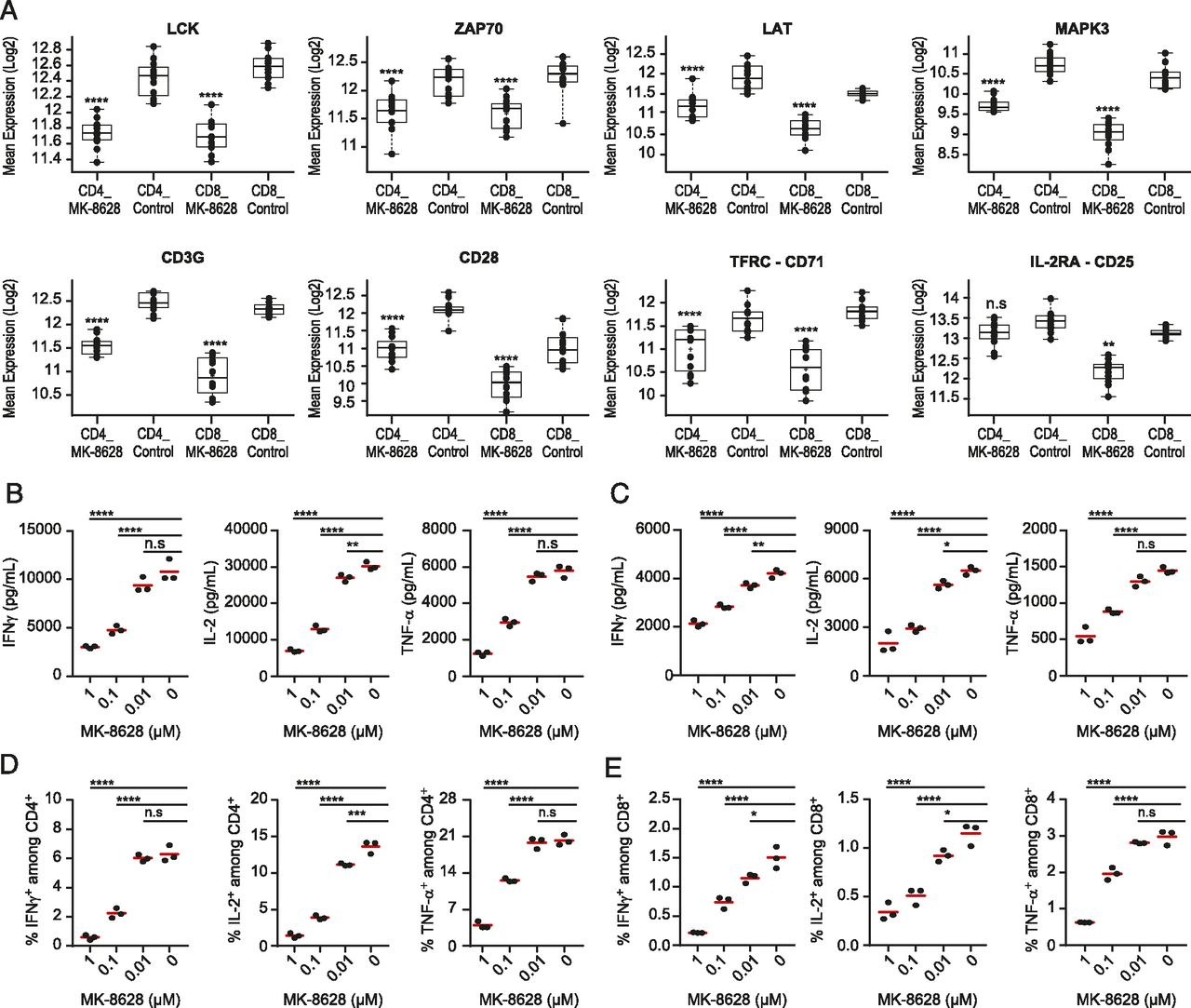 BET Bromodomain Inhibition Suppresses Human T Cell Function