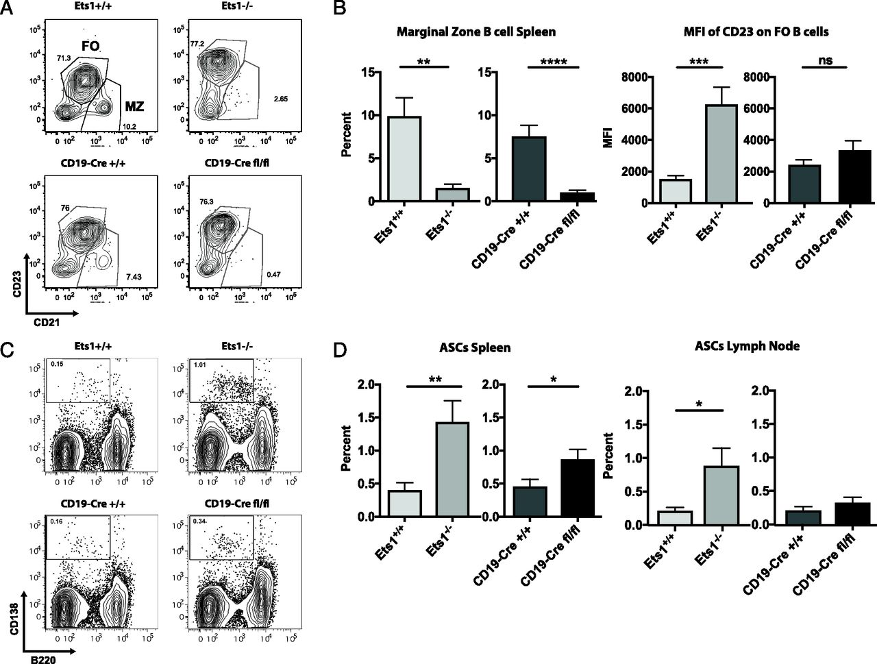 Ets1 Controls the Development of B Cell Autoimmune Responses in a